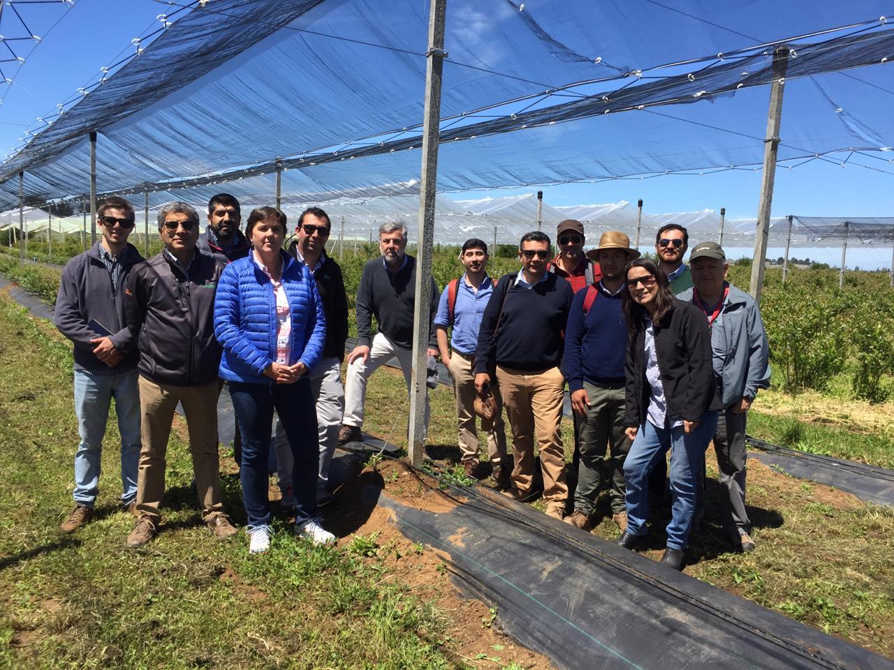 Agronomía UdeC participa en el desarrollo de la fruticultura en el sur del país
